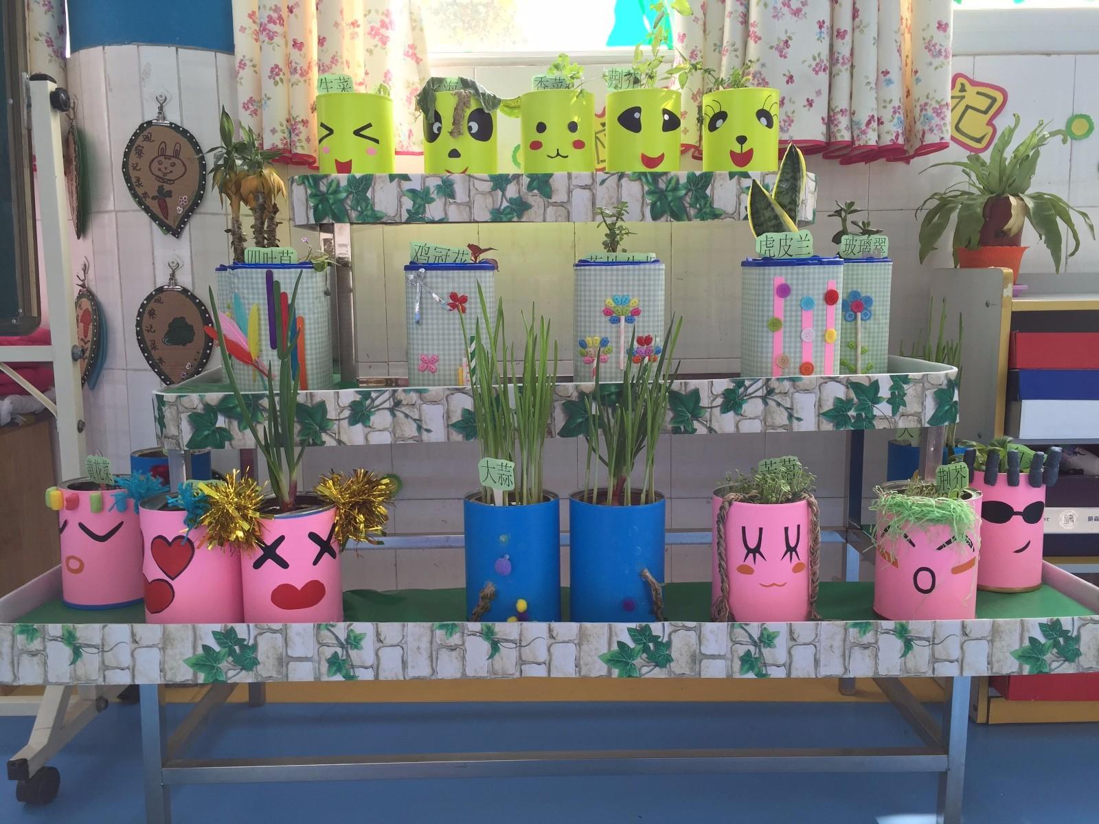 中牟县东风路幼儿园开展植物角评比活动图片