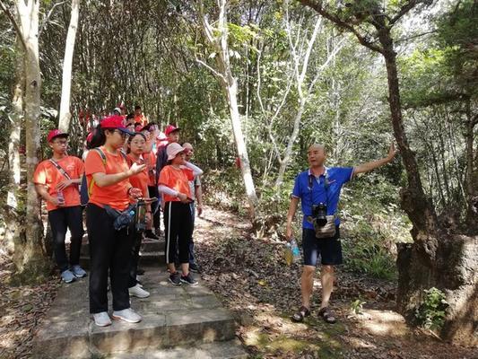 探究亚热带常绿阔叶林植被种群