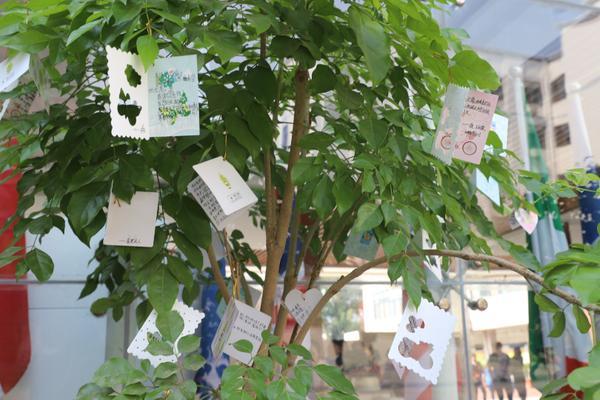 """6.""""心愿樹""""上掛滿了學生們的感恩與祝福"""