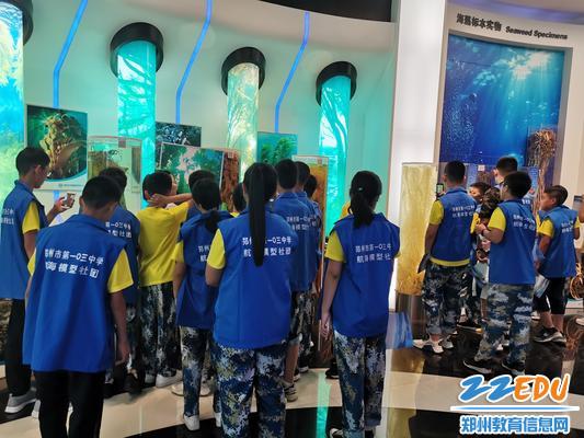 4同学们认真观赏海藻科技馆 展示的标本