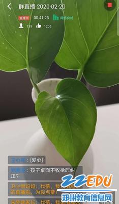 代蓓老师为了舒缓学生心理用绿色植物代替讲课背景