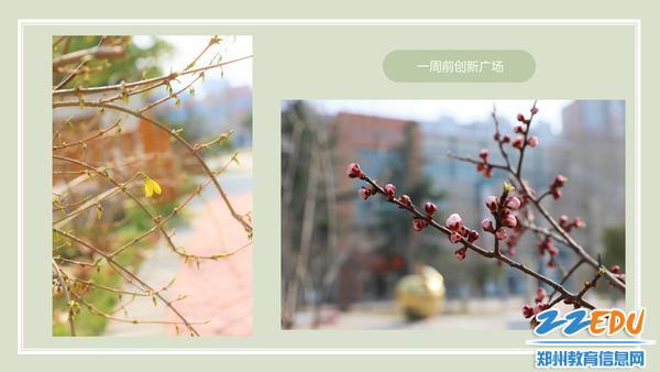 云游十二中_03