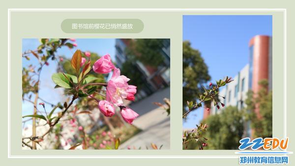 云游十二中_05