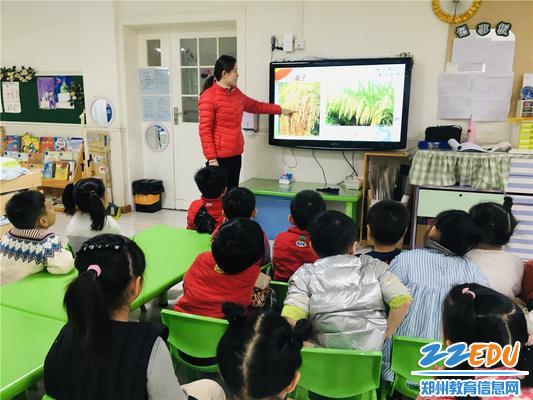 3.教师讲述常见的几种粮食作物