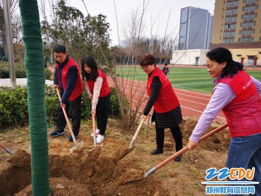 郑东新区龙岗小学党员代表植树