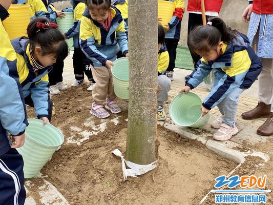 郑东新区永昌小学植树进行中