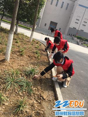 6.志愿服务小分队做力所能及的劳动服务