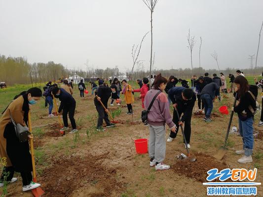 8植树造林,保护环境