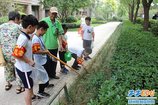 学生们认真向环卫工人学习除草技术 (1)