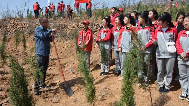 12 植树共创绿城微团课教育