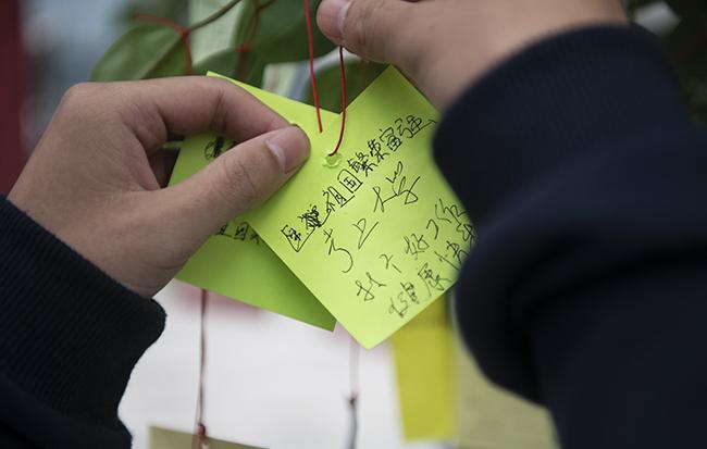 """学生把自己梦想挂在""""梦想树""""上1"""