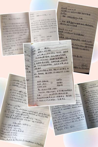 4班级教师认真记录的学习笔记