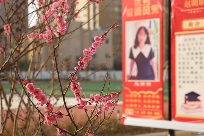 郑州经开区第五中学春意浓,静待学子归 通讯员靳晓博13783633789 (4)