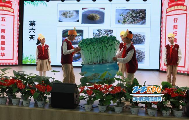 郑州市管城回族区创新街小学学生进行劳动实践探究成果汇报